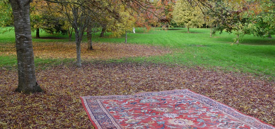 Rugs in the orchard in autumn