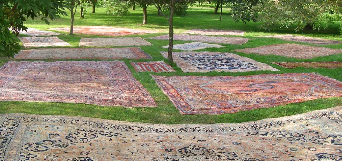 Rugs in the orchard